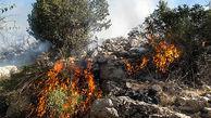 برخورد شدید قضایی در انتظار آتشافروزان جنگلهای بویراحمد + فیلم