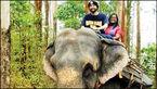 دانشجوی فراری به هند گریخته است+ عکس
