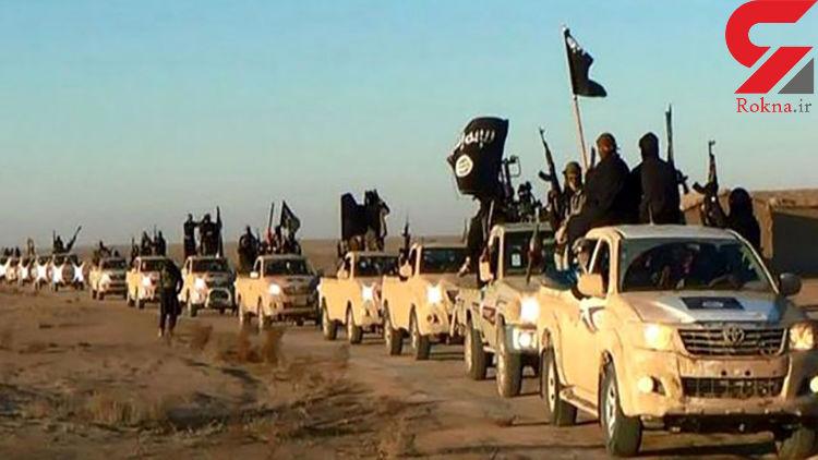 هیچ تبعه کویتی در میان داعشیها نیست