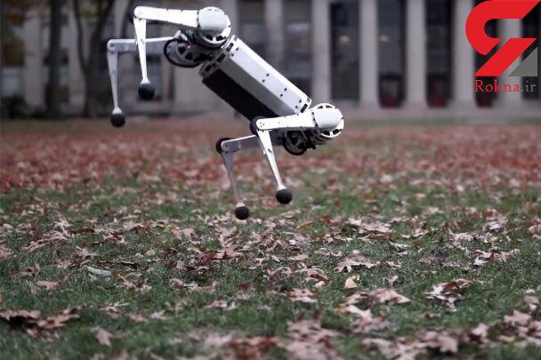 ربات وارونه، پشتک هم می زند