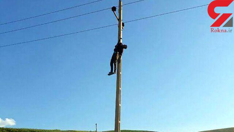 عکسی تلخ از جسد مردی که بالای تیر برق در هرسین آویزان شد (14+)