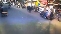 لحظه پرتاب شدن یک زن به هوا وسط خیابان + فیلم