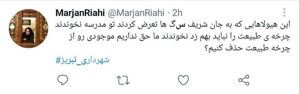 ماجرای کشتار سگها توسط شهرداری تبریز+ فیلم و واکنشها
