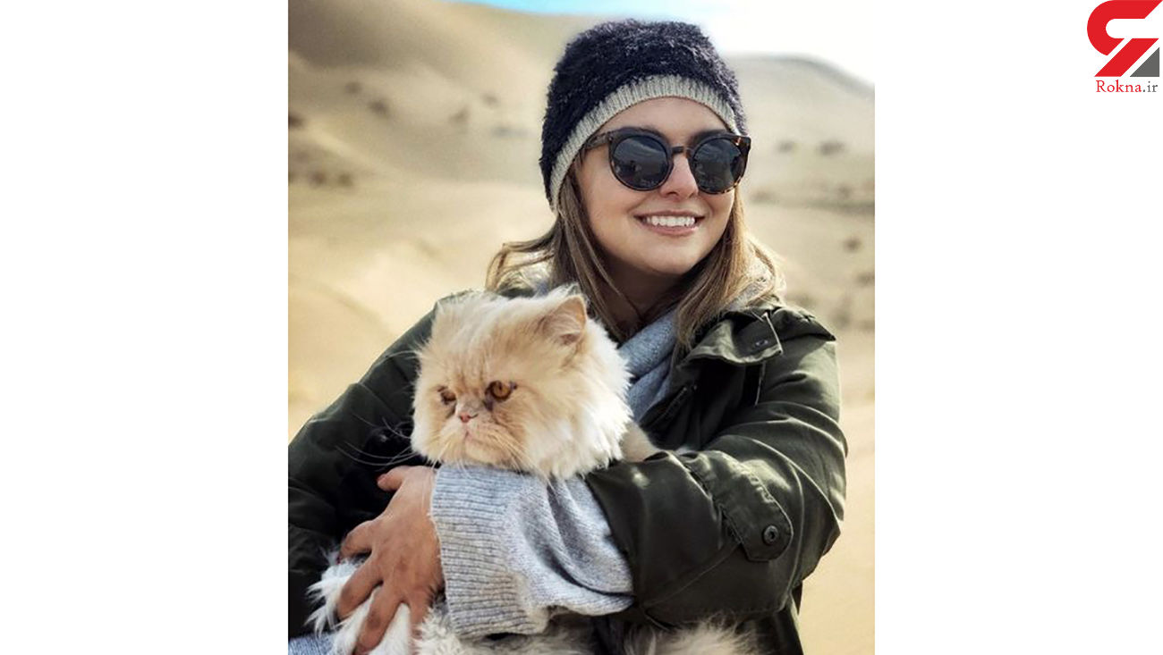 گربه پشمالو دنیا مدنی + عکس
