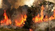 جنگل های بازفت شهرستان کوهرنگ در آتش سوختند