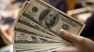 کشف ۱۲۰ هزار دلار قاچاق جاساز شده از مسافری در بندرعباس