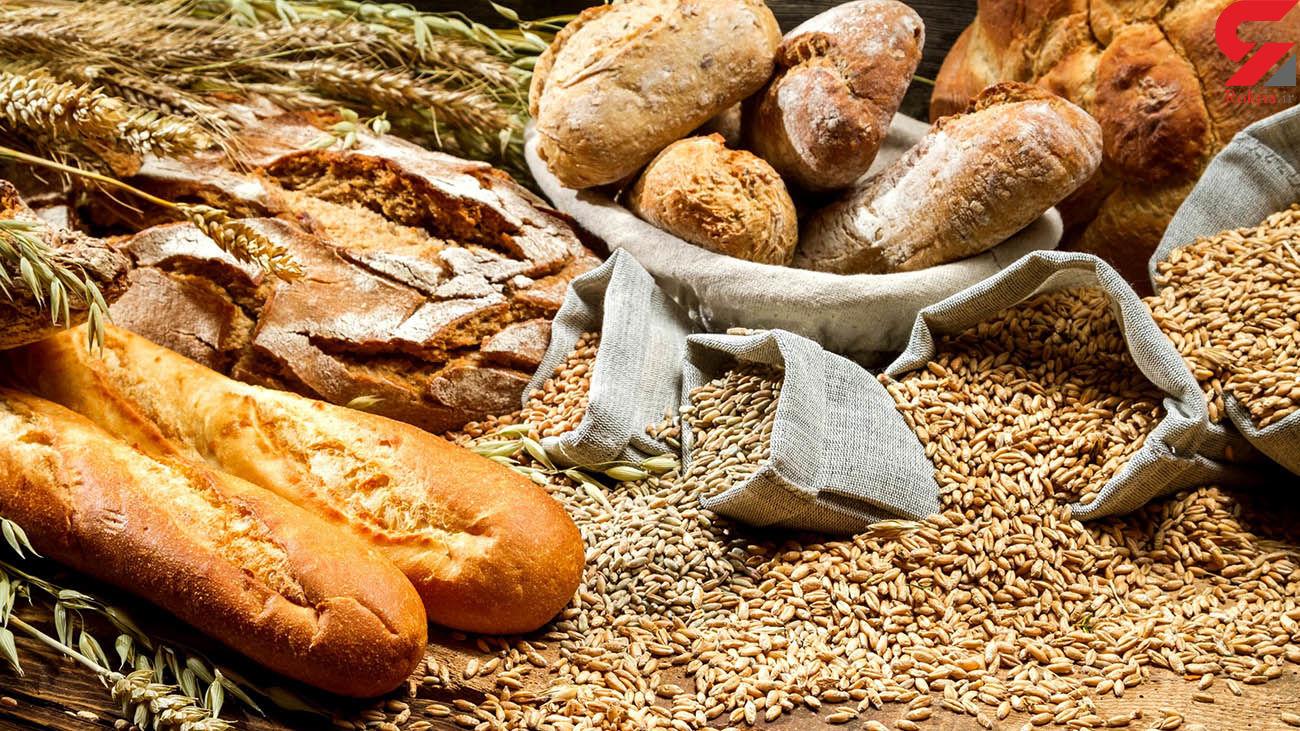 قیمت جدید گندم اعلام شد / دولت هنوز نان را گران نکرده است!