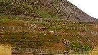 رسیدگی ویژه به پرونده زمین خواری هفت سنگان