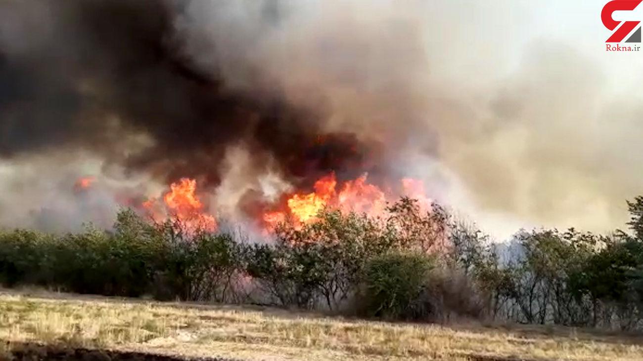 فیلم آتش سوزی عظیم در بخش کُهله و جایزان خوزستان