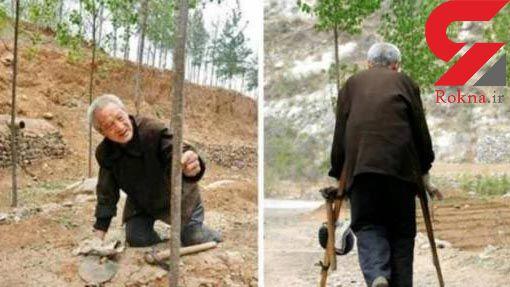مرد معلول بیابان را به جنگل تبدیل کرد + عکس
