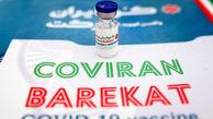 تحویل بیش از 5 میلیون دُز واکسن برکت به وزارت بهداشت
