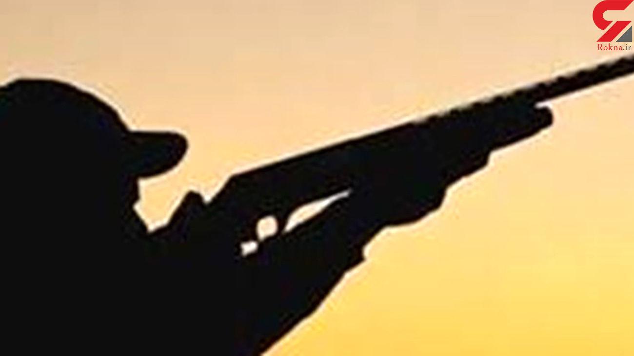 عکس لاشه خرس بینوا در دنا /گلوله شکارچیان بی رحم مستقیم بود
