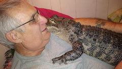 تمساح حیوان خانگی مرد 65 ساله شد!+عکس