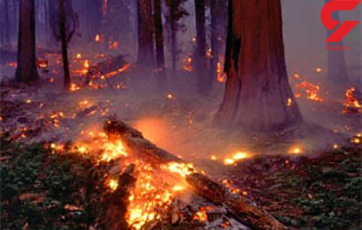 وقوع آتش سوزی در 90 هکتار از مراتع و جنگل های بخش سردشت دزفول