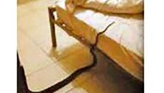 چه چیزی در رختخواب این زن او را تا مرز سکته برد؟+ عکس