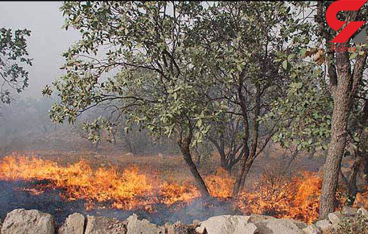 آتش سوزی ادامه دار جنگلها در گیلان