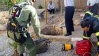 برق گرفتگی مرگبار یک مرد در قعر چاه+ عکس