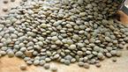 برای تسکیت التهاب مفاصل ، عدس و چای سبز بخورید