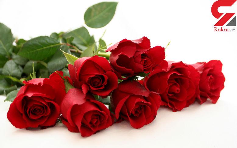درمان فوری سردرد با یک گل خوشبو