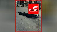 جان باختن دلخراش جوان اردبیلی در سانحه تصادف در کمربندی نوشهر + عکس