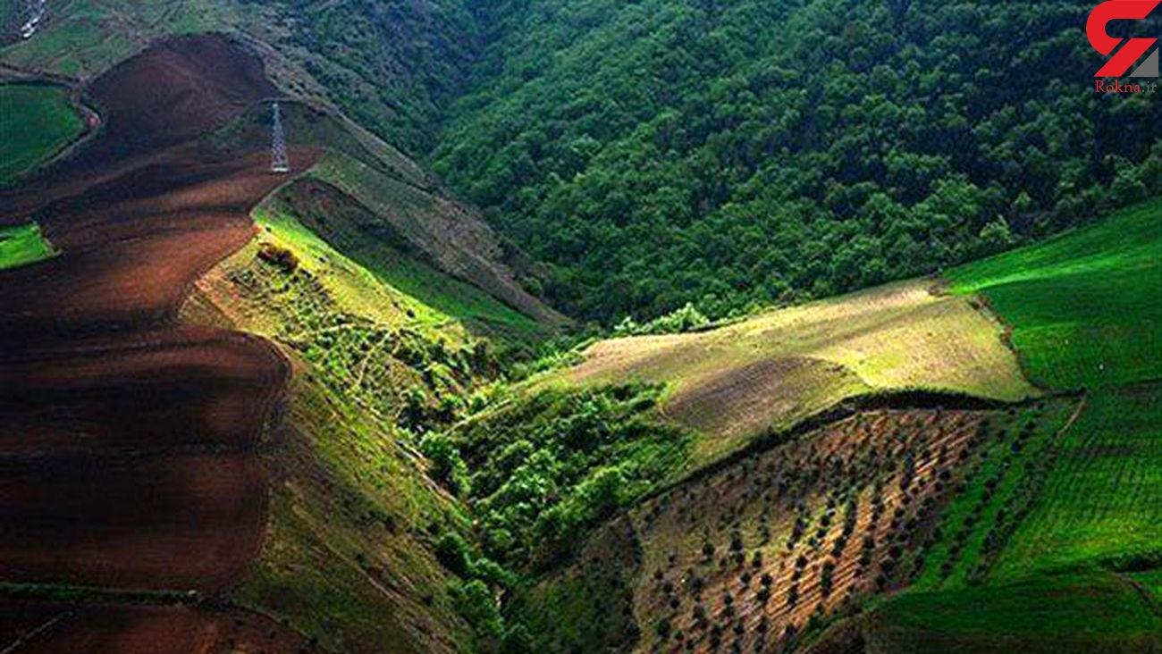جنگل های آق مشهد به نام دولت سند خورد