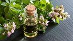 درمان سرفه های وخیم با دمنوش مرزنگوش