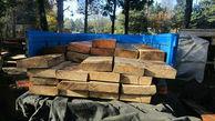 کشف5/5 تن چوب جنگلی قاچاق در سوادکوه