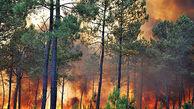 آتشسوزی در جنگلهای کوه سمر همچنان ادامه دارد / در کهگیلویه رخ داد