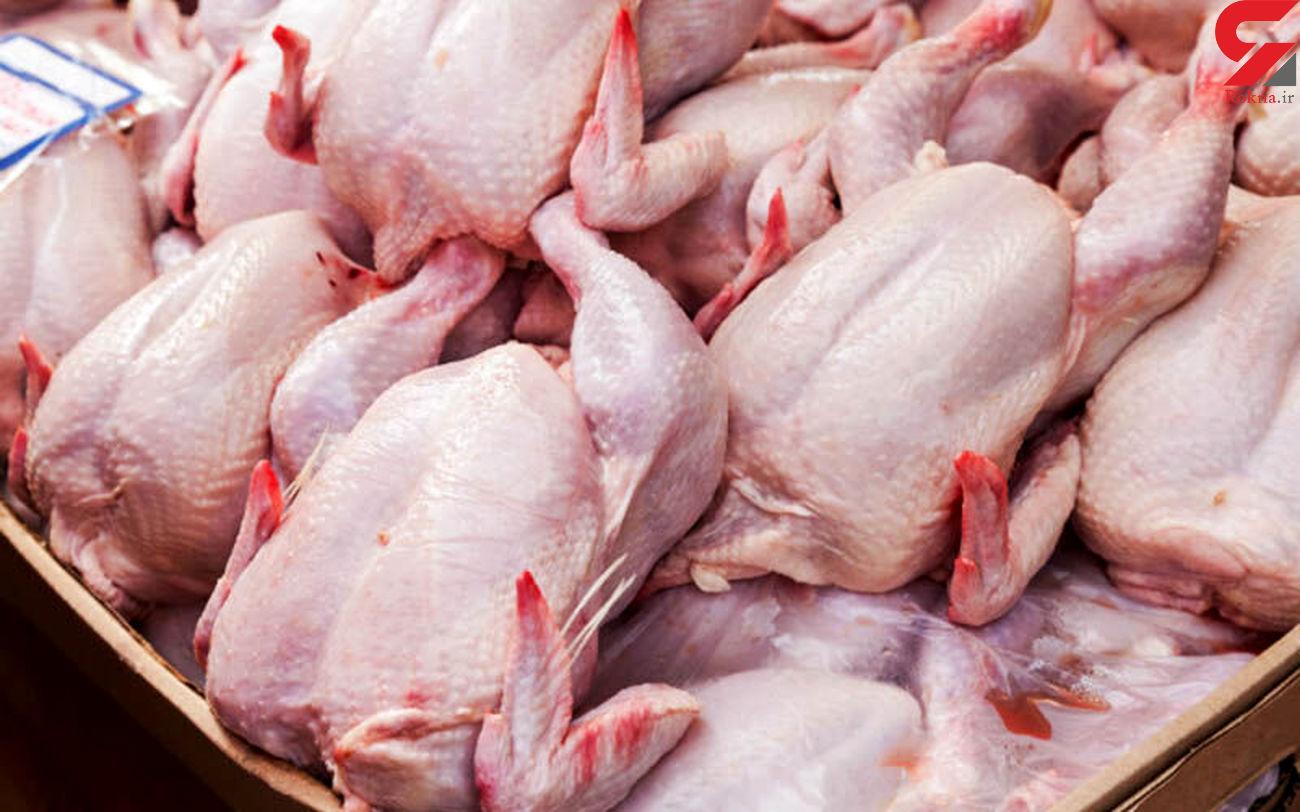 میانگین قیمت هرکیلو گرم مرغ آماده طبخ ۱۹.۱ هزار تومان