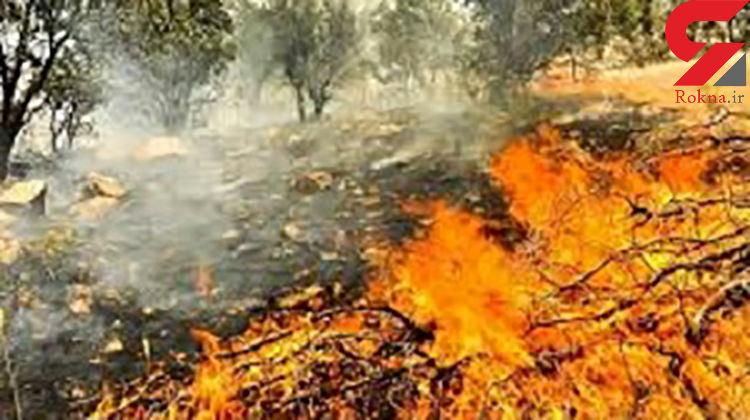 وقوع آتش سوزی در منطقه دو شاخ طاقبستان