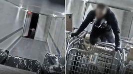 دستگیری دزدانی که همانند فیلم سریع و خشن از کامیون ها در حال حرکت سرقت می کردند + فیلم و عکس