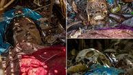 ترسناک ترین قبرستان دنیا + عکس 16+