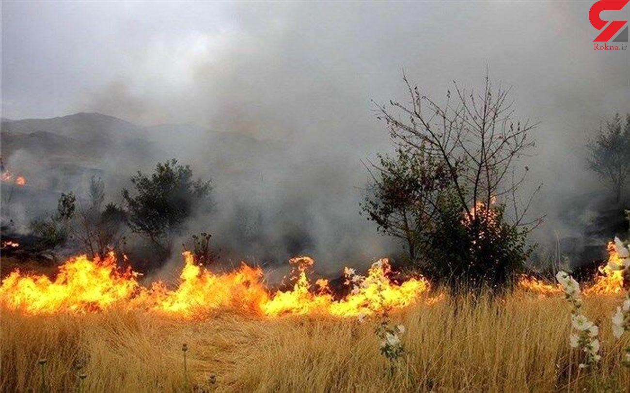 آتشسوزی در مراتع علیآباد نیزار قم همچنان ادامه دارد
