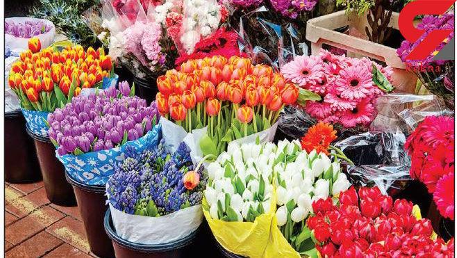 کاهش ۴۰ درصدی قیمت گل در بازار/رکود بر بازار گل حاکم است