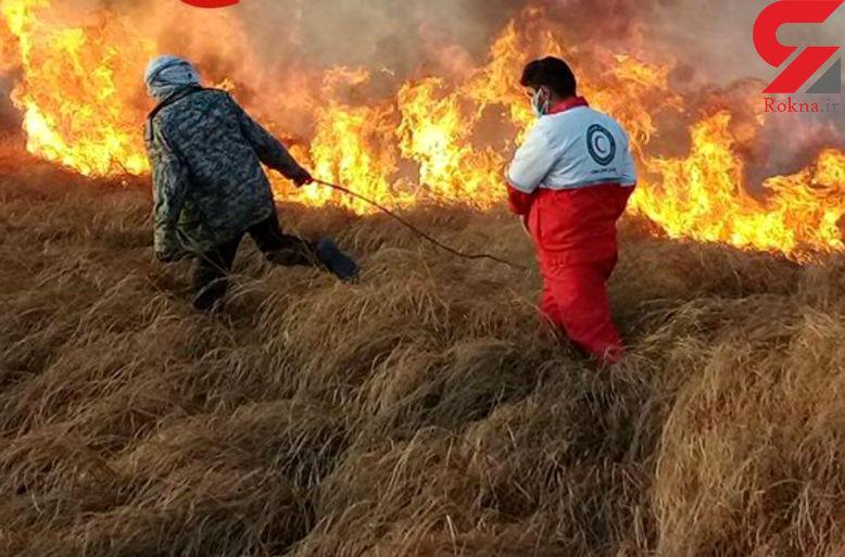 آتش سوزی ۶۰ هکتار از مراتع تالاب خشکیده هامون + عکس