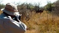 کشف  3 قبضه سلاح از شکارچی خلافکار پلدختری