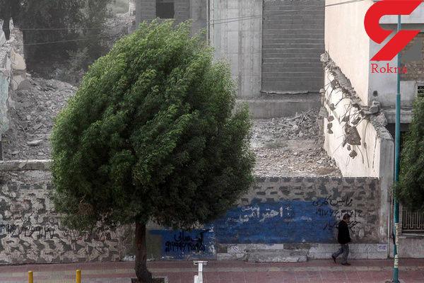 وزش باد شدید در تهران تا دو روز آینده/ بارش باران سیلآسا تکذیب شد