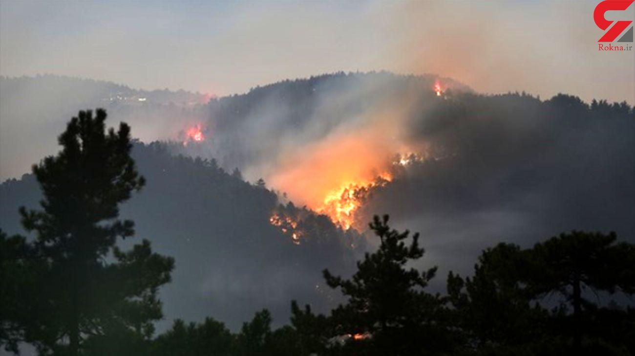 آتش سوزی های گسترده در 19 جنگل ترکیه