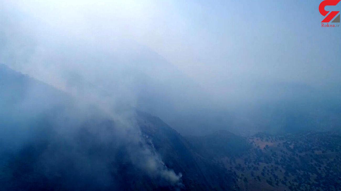 دستگیری عاملان آتشسوزی ارتفاعات جنگلی اقلید
