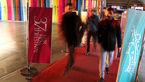 پالتو شتری بازنده اصلی روز هفتم جشنواره/وقتی آزادگان برای خبرنگاران از سلبریتیها جذابترند+تصاویر