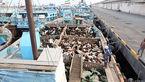 توقیف محموله بزرگ دام قاچاق در آب های خلیج فارس