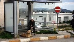 سگ ترکیهای یک سال است که به انتظار صاحبش در ایستگاه اتوبوس نشسته است + تصاویر