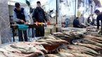 قیمت هر کیلو قزل آلا اعلام شد / قطع برق به مزارع پرورش ماهی آسیب زد!