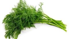 با این سبزی دوپینگ کنید