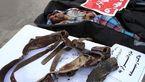 انتشار عکس اجساد 2 مرد مخوف / در کمین پلیس خاش کشته شدند  + جزییات