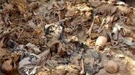 کشف گور دستهجمعی با ۳۵۰۰ جسد زن، مرد، کودک در پایتخت سابق داعش