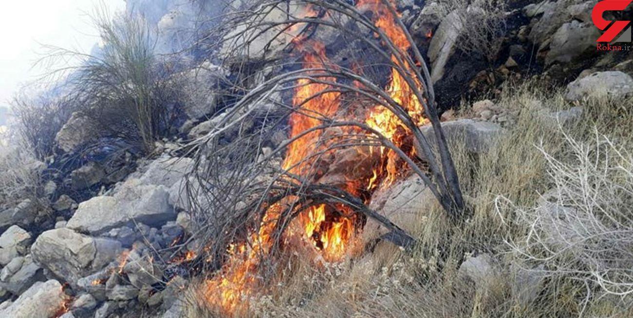 آتش سوزی در ارتفاعات روستای ویله