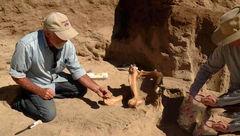 یک حیوان از عصر یخبندان کشف شد/در حیات خانه یک زوج