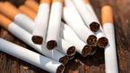 سیگاری ها و قلیونی ها باید مالیات بدهند !
