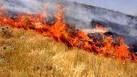 فاجعه زیست محیطی در دالاهو / 24 هکتار در آتش سوخت + عکس